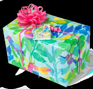 Geschenkpapier Jugend + Erwachsene | Birds | Geschenk